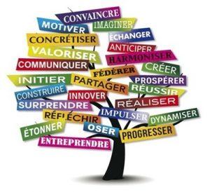 arbre des valeurs